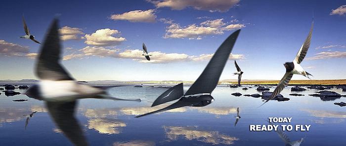 Bionic Bird è già pronto a spiccare il volo