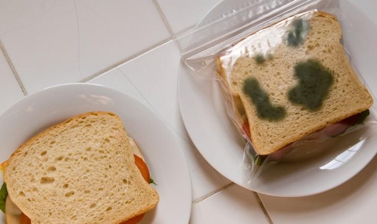 Il sacchetto salva sandwich