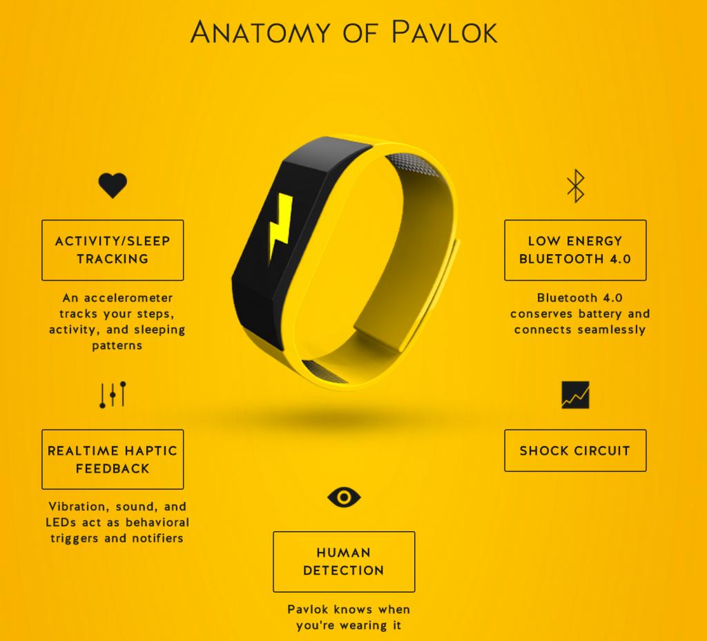 L'anatomia di Pavlok in una infografica