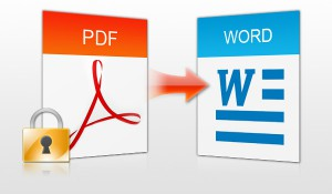 tasforma pdf in word